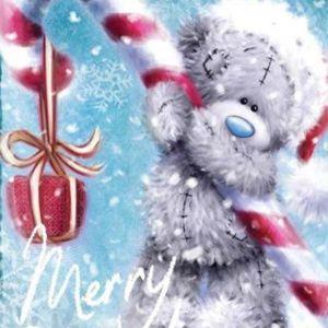 ✭ MERRY CHRISTMAS ✭