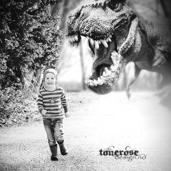 { DinosaurBursdag // inspirasjon // invitasjon }