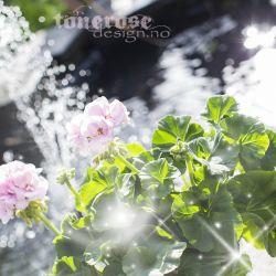 { klar for våren... }