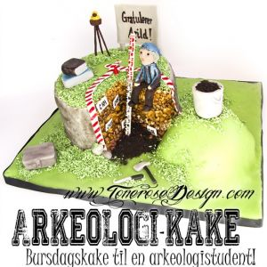 Bursdagskake til en arkeologistudent!
