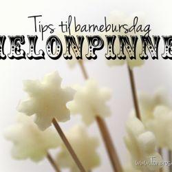 Tips til barnebursdag – melonpinner!
