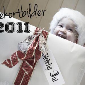 Julekortfotografering – Nissebilder 2011 ♥