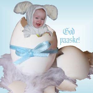 Påskeharebabyen vår ønsker deg en riktig god påske!