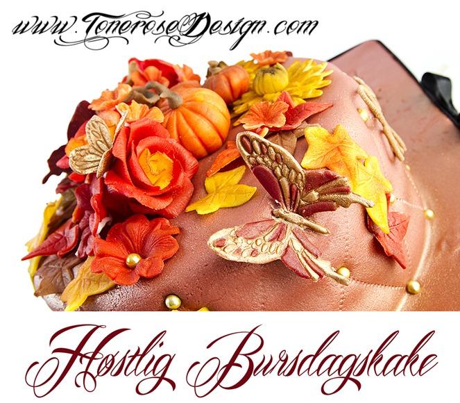 høstlig bursdagskake IMG_8679