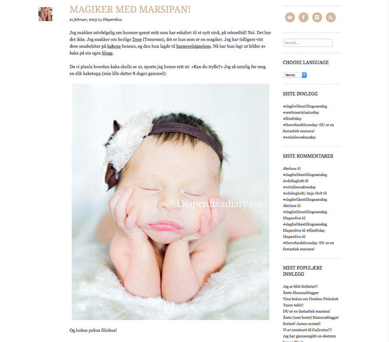 diaper diva diary tonerose design baby kake