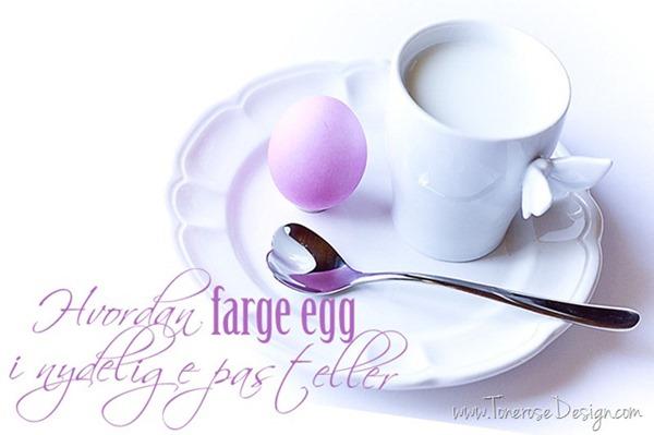 farge egg IMG_6206_thumb[8][1]