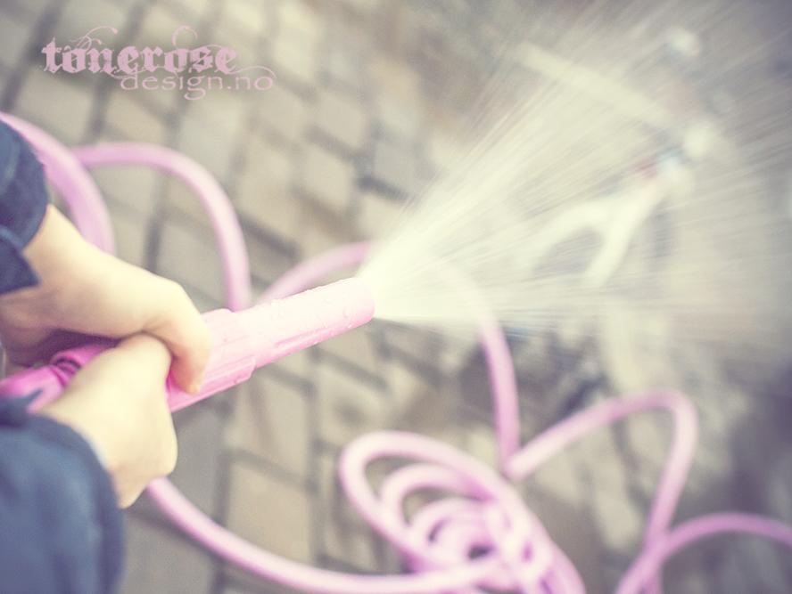 rosa hageslange2