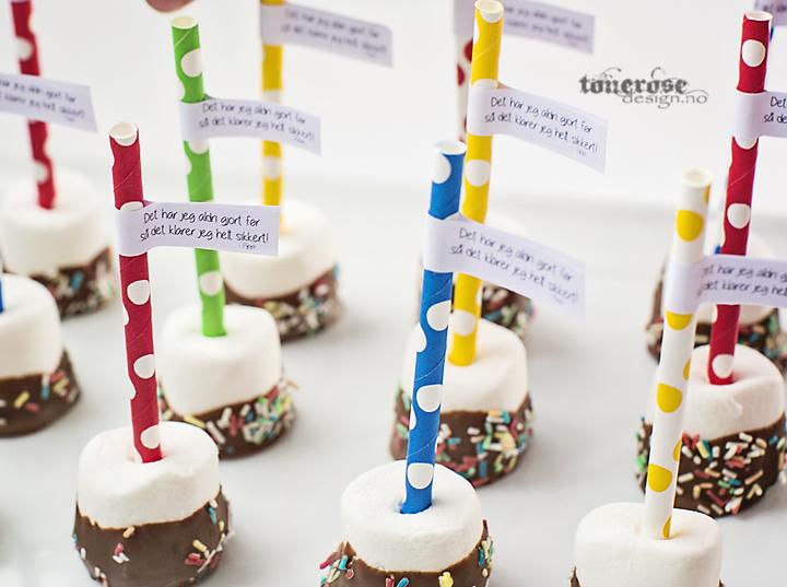 KL5A7389_pippi_langstrømpe_cake_pops_bursdag_