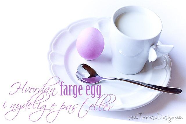 farge-egg-IMG_6206_thumb81