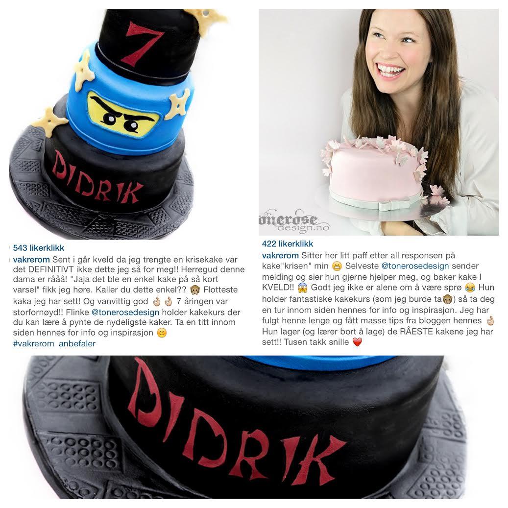 _ninjago_cake_kake_ninja