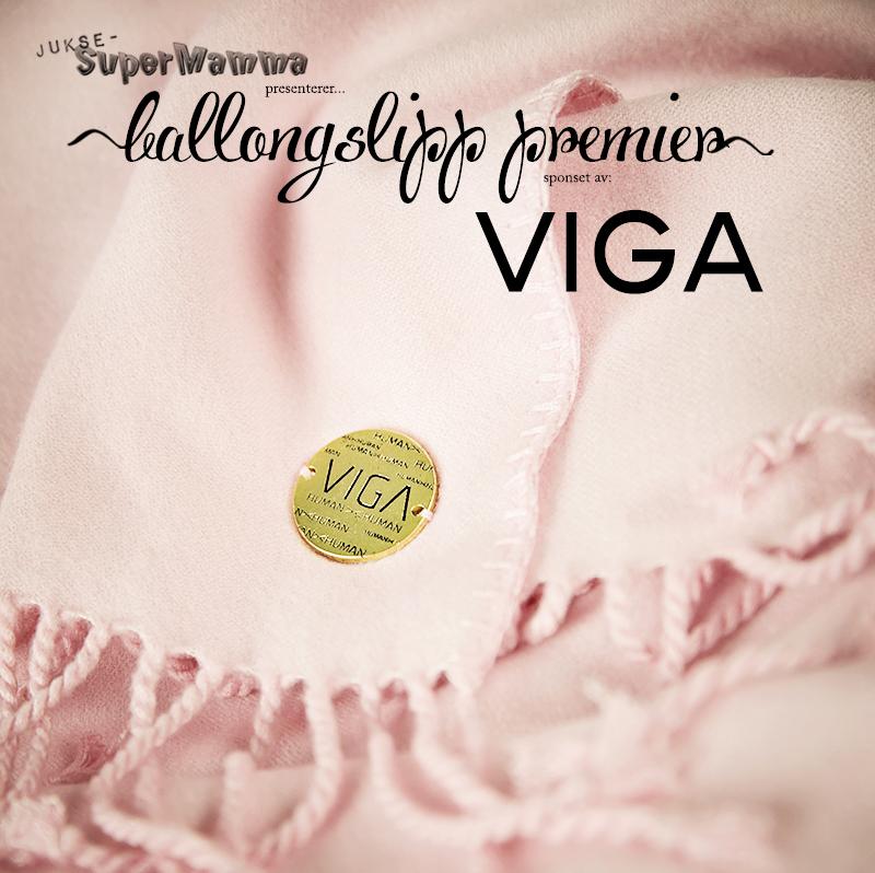 VIGA KL5A0650 copy