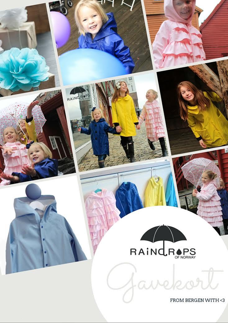 raindrops of norway copy