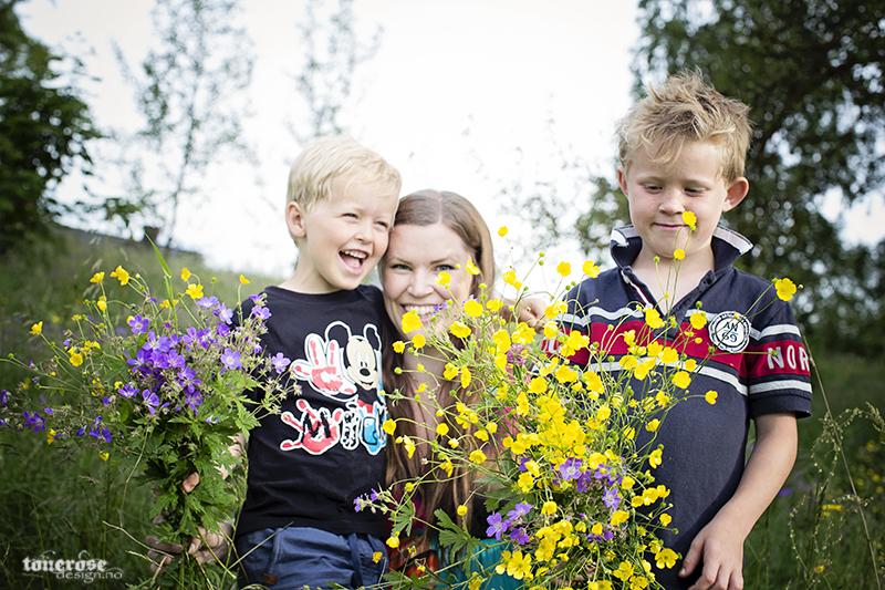 markblomster blomster sommer
